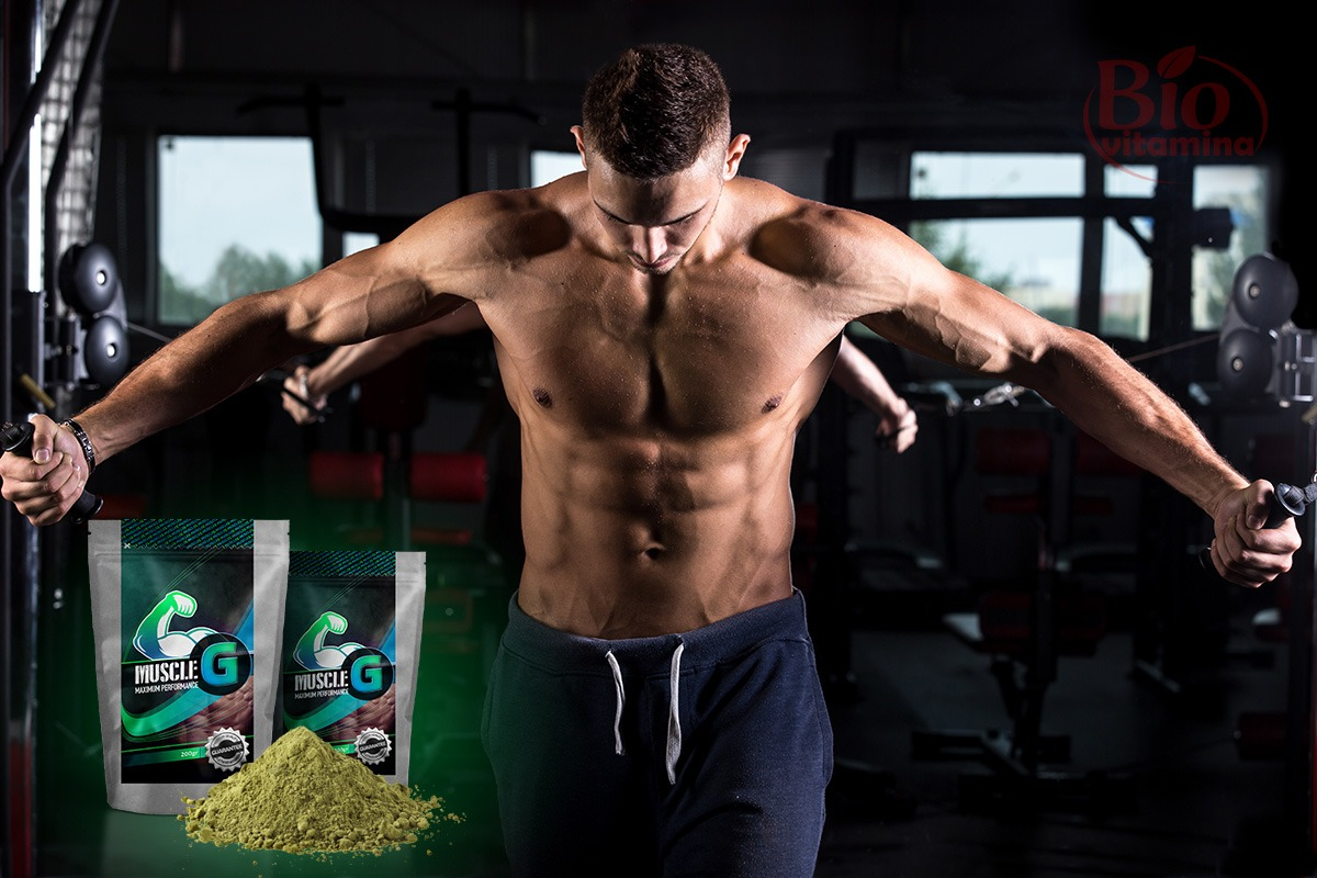 muscle-g-masa-musculara-sala