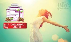 forskolin-active-grasime-silueta-dieta